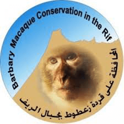 Barbary Macaque Conservation Awareness